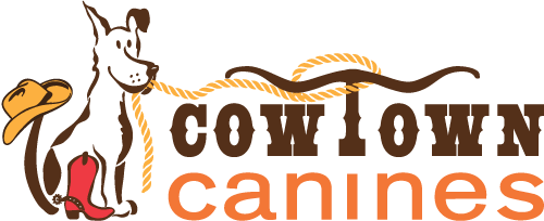 Cowtown Canines – Fort Worth – Benbrook – Dog Boarding, Dog Day Care & Dog Training Retina Logo