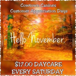 $17 Daycare on Saturdays!