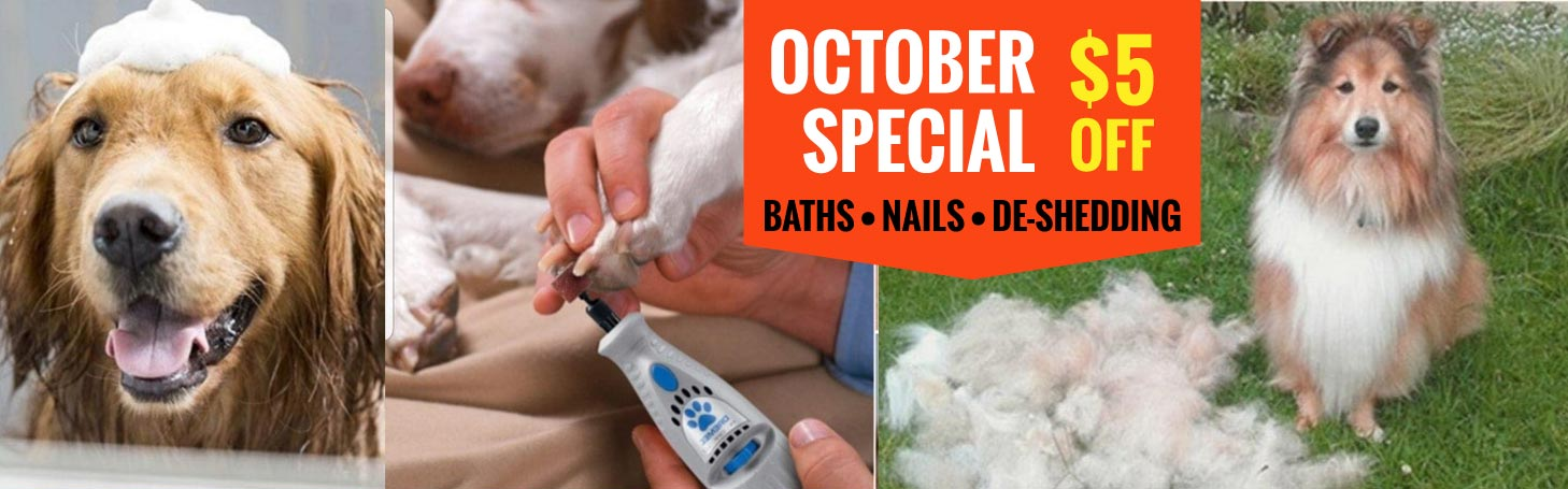 October Special in the Spa